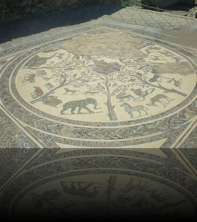 Resti di un pavimento a mosaico