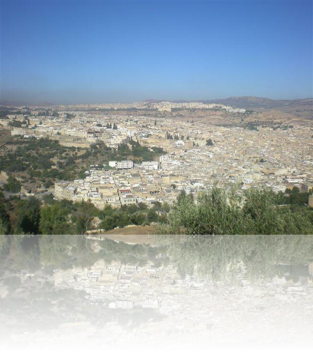 Vista dall\'alto della città di Fes
