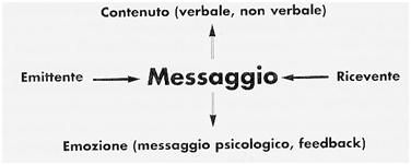 immagine7